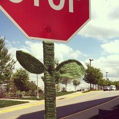 Asheville yarnbomb. Photo by robinplemmons