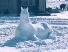 Snow Horsse