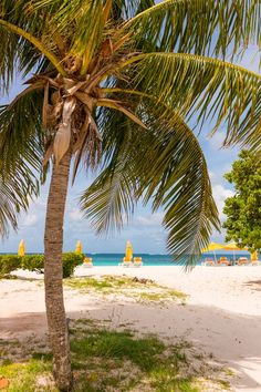 5 Worst Things To Do In Anguilla + 5 Best Places To Eat