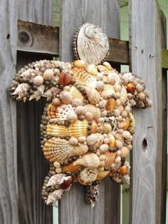 sea turtle made of sea shells