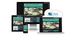 Poissons, fruits de mer et service à la clientèle seront à l'honneur avec ce modèle de site Web. Une ambiance accueillante et accessible pour inviter vos clients à savourer la mer!