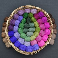 Gradations of Woodland and Garden  60 Color Yarn by colorshiftyarn, $186.00