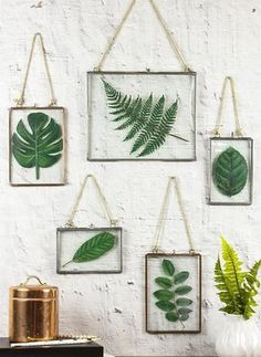 [orginial_title] – DecoArt Inc. Framed Faux Pressed Leaves — Create an upscale look without the cost. Framed Faux Pressed Leaves — Create an upscale look without the cost. Diy Wand, Leaf Projects, Diy Art Projects, Wood Projects, Diy Home Decor For Apartments, Pressed Leaves, Framed Leaves, Deco Nature, Nature Decor