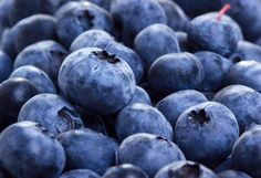 Foods High in Polyphenols