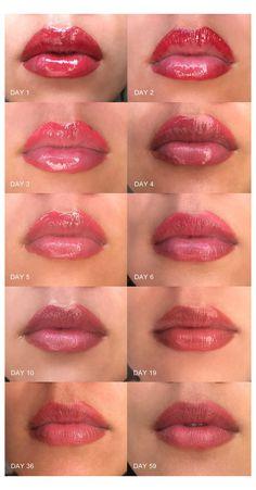 Lip Permanent Makeup, Lip Makeup, Eyeliner Makeup, Natural Lip Colors, Natural Lips, Lip Color Tattoo, Tattoo L, Lion Tattoo, Tattoo Removal Cost