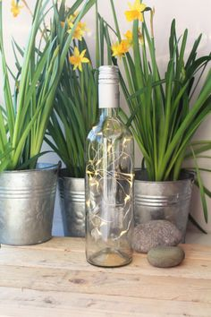 Sparkling dainty fairy lights in a pre-loved wine bottle!  Placed on the mantelpiece or window sill, or for making a stunning table decoration , these bottles are so very pretty and yet ethical and green. They are perfect for a wedding table, party, BBQ or simply as a pretty room decoration or unusual gift. Handmade in rural North Yorkshire, not only do they make an eye catching focal point but a good talking point ! A small hole has been drilled into the base of the bottle for the lights…