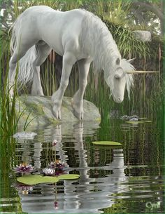 .Unicorn... beautiful