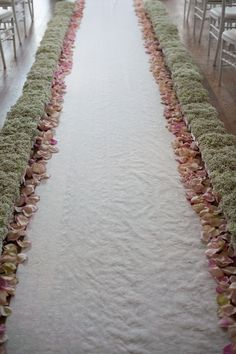 Baby's Breath and Rose Petals  Flyboy Naturals offers rose petals! Eco-friendly...over 100 colors!