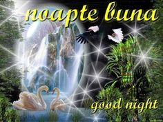POZE DE NOAPTE BUNA Good Night, Comic Books, Photos, Nighty Night, Comic Strips, Cartoons, Comic Book, Good Night Wishes, Comics