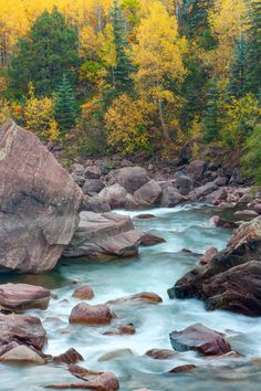 Fall colors and the Crystal River, White River National Forest, near Redstone, Colorado | Andy Cook, RMRP