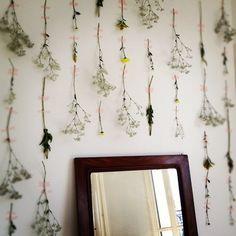 more wallflowers