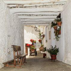 Tinao alpujarreño. La Alpujarra (Granada) / Typical street in La Alpujarra…