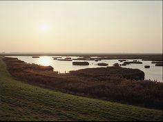 Marnix Goossens, Verdronken land van Seaftinge, Zeeuws-Vlaanderen