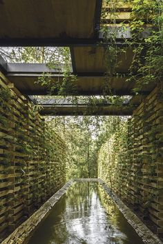 "enochliew:  ""Orchid Pavilion by CC Arquitectos  """