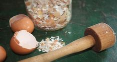 6 ways to use egg shells.jpg