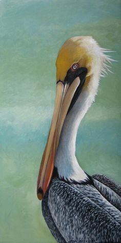 Title Pelican  Fine art archival print of my original oil painting (the original has sold). Paper size: 8 1/2 x 11; 13 x 19; 17 x 22 (inches)