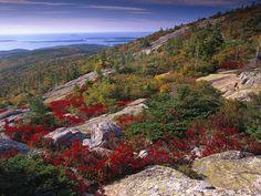 Atlantic Coast From Cadillac Mountain Acadia National Park