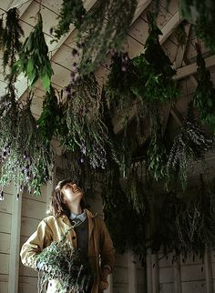 Hanging Herbs | Kinfolk Magazine