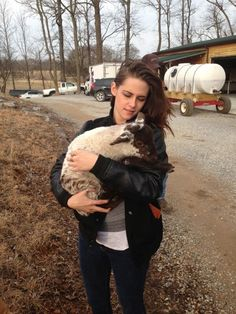 Actress Kristen Stewart holds a baby lamb @short_mountain Distillery while making her directorial debut.