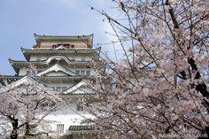 Japanese castles I've visited: #15 Fukuyama Castle in Hiroshima Prefecture. This castle is right next to Fukuyama Station. You can see it when you pass by in the Shinkansen. It's between Hiroshima and Okayama, not too far from Onomichi. Nice during cherry blossom season! :)