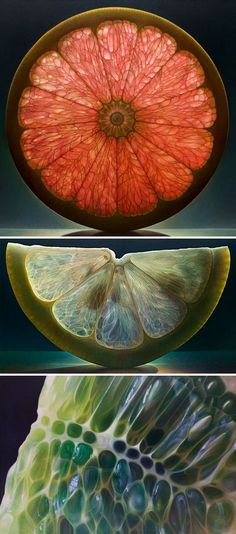 23 Jaw-Dropping Examples Of Hyper Realistic Art - Obst Fotografie Fruit Photography, Abstract Photography, Still Life Photography, Creative Photography, Photography Studios, Photography Courses, Professional Photography, Wedding Photography, Photography 2017