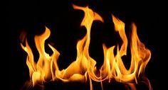 Köpek Barınağında Çıkan Yangın Korkuttu