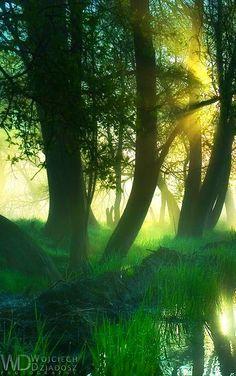 stunning photography #stunning #photography #awesome