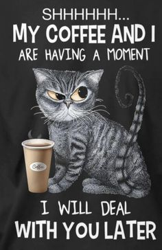 Funny Cats, Funny Animals, Happy Birthday Cousin, Coffee Humor, Coffee Coffee, Coffee Time, Grumpy Cat Humor, Cat Posters, Just For Fun