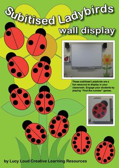 "These subitised Ladybirds are a fun resource to display in your classroom. Engage your students by playing ""Find the number"" games. Print the..."