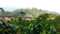 Housing provided for coffee pickers at Finca Cerro Bueno, La Paz, Honduras. www.hondurascoffeefamily.com