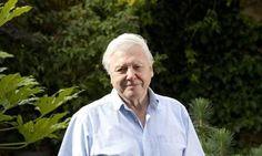Sir David Attenborough warns things will only get worse