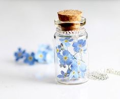 A bottle of memories, Unknown called it. But aren't memories, just flowers. It would be nice though, if I could see the good things with these little flowers Bottle Jewelry, Bottle Charms, Bottle Necklace, Bottle Art, Little Flowers, Blue Flowers, Beautiful Flowers, Forget Me Not, Blue Aesthetic