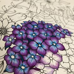 Take a peek at this great artwork on Johanna Basford's Colouring Gallery! Secret Garden Coloring Book, Coloring Book Art, Coloring Pages, Coloring Tips, Johanna Basford Coloring Book, Johanna Basford Books, Johanna Basford Secret Garden, Colorful Drawings, Flower Drawings With Color