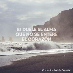 Que no se enteré Letting Go, Decir No, Poetry, Let It Be, Words, Beach, Water, Outdoor, Instagram