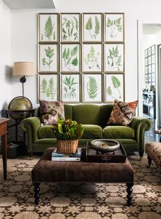 Cozy space with a green sofa that feels like a neutral.  Great botanical gallery wall! #botanical #green sofa #ottoman