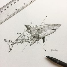 Spending the day reading and answering as many emails as I could. Here's a photo of the shark from the Geometric Beasts series for those who emailed and requested me to post it. ⚡️ of the day ideas Login Hai Tattoos, Body Art Tattoos, Forearm Tattoos, Sleeve Tattoos, Geometric Drawing, Geometric Art, Geometric Tattoo Animal, Geometric Sleeve, Shark Drawing