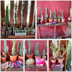 """33 Me gusta, 2 comentarios - Telar De Campo (@telardecampo) en Instagram: """" Rincón cactucero #telardecampo #Litincactus#inspiration #pasion#creatividad#cactus #hilos"""""""