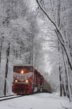 Beautiful Places in the world - Snow Train, Terre Haute, Indiana photo via maz (I feel like this is the closest I could get to the - Winter Szenen, Winter Magic, Winter Time, Train Tracks, Train Rides, Train Trip, Old Trains, Snow Scenes, Winter Beauty