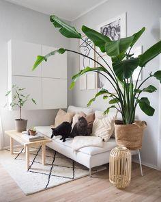 Ikea Soderhamn, Sweet Home, Living Area, Living Room, Ikea Sofa, Home Decor Trends, Home Interior Design, Interior Modern, Decoration