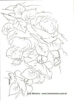 rosa 3.1.jpg (1700×2338)