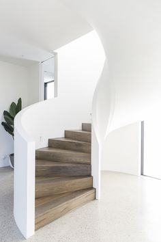 Stairs | Curved Stair | Architectural | Plaster Walls | Staircase | Balustrade | American Oak | Stained Timber | Polished Concrete | Interior Design