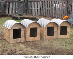 Turkey Nest Boxes-Early March, select 1 TOM per 3 HENS to breed. Feed corn & turkey pellets free choice. Free   range, clip wings, make roost area in a tree & surround with electric fence to encourage natural reproduction.  Heritage turkey are slow to mature- white-18 weeks, 28 weeks for Bourbon Reds. It is suggested to cover nest boxes with pine bows & provide roosts.....
