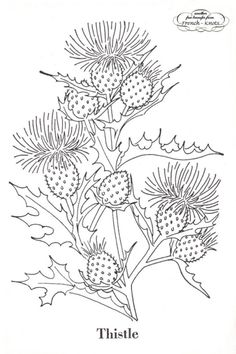 vintage embroidery patterns Poppies, Thistles and Goldenrod Flowers Embroidery Transfer Pattern Embroidery Designs, Embroidery Transfers, Embroidery Patterns Free, Crewel Embroidery, Ribbon Embroidery, Cross Stitch Embroidery, Machine Embroidery, Embroidery Ideas, Embroidery Needles