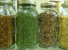 herbal teas!