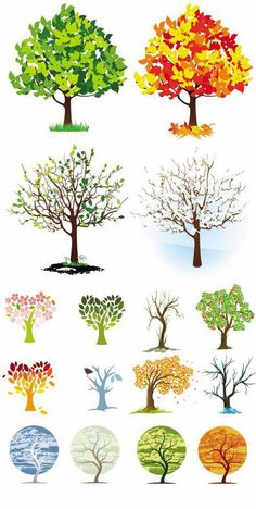 gallery of illustrated trees