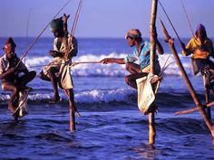 gidilecek yerler: srilanka