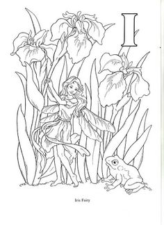 Flower and Fairy Alphabert by Darcy May - Oksana Volkova - Álbuns da web do Picasa...Inspirational ideas for painted rocks in the garden!