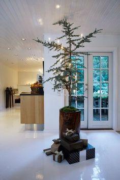 "Christmas tree in hollowed tree trunk w/ moss ""tree skirt"""