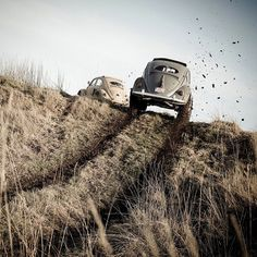 VW Fusca Beetle Offroad T3 Vw, Vw Baja Bug, Bike Engine, Vw Vintage, Beautiful Bugs, Vw Cars, Vw Beetles, Vw Camper, Dream Cars