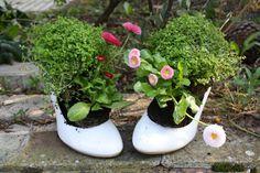 Très drôle ces chaussures récupérées pour planter !!